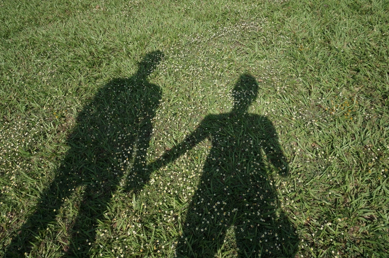 shadows on the grass holding hands